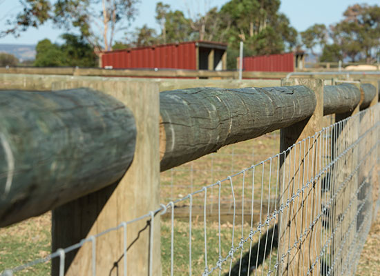 PERMAPole post and rail fencing with Equimesh