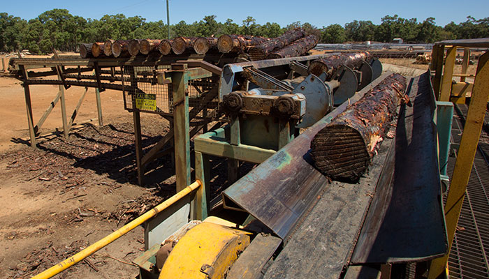 Logs being de-barked