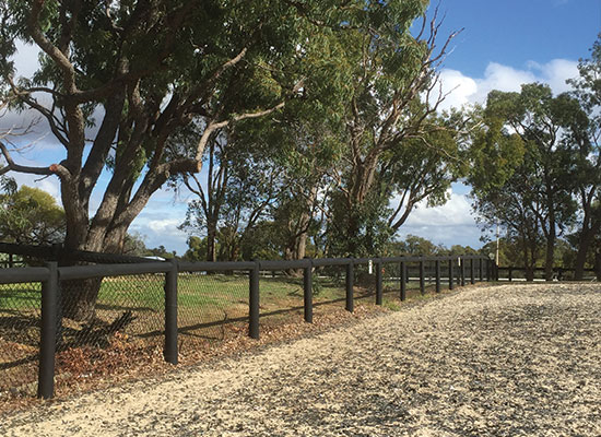 PERMAPole Inspiration |Dressage arena fencing with mesh