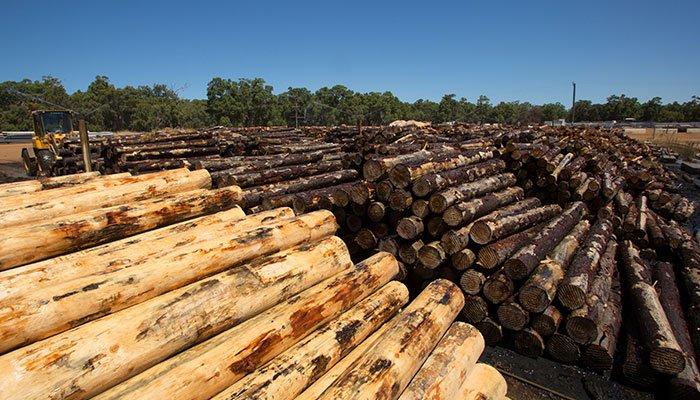 De-barked logs